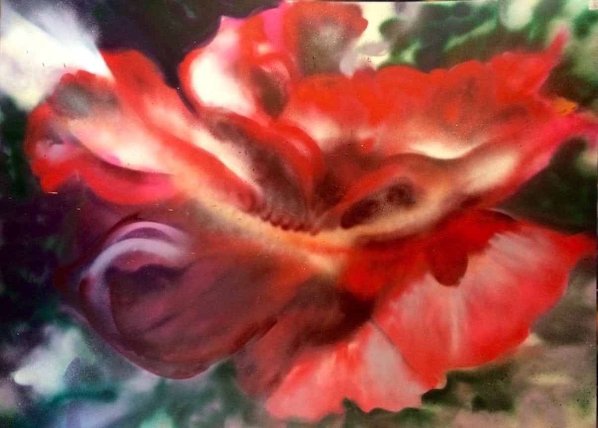 Large, red, heirloom rose, opening towards the sun. Painted with acrylic spray paints by Cynthia McLoughlin