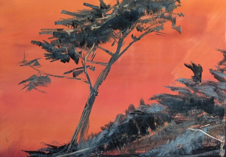 Wind blown evergreen with elongated trunk in silhouette against an orange sky on the beach in Carmel.