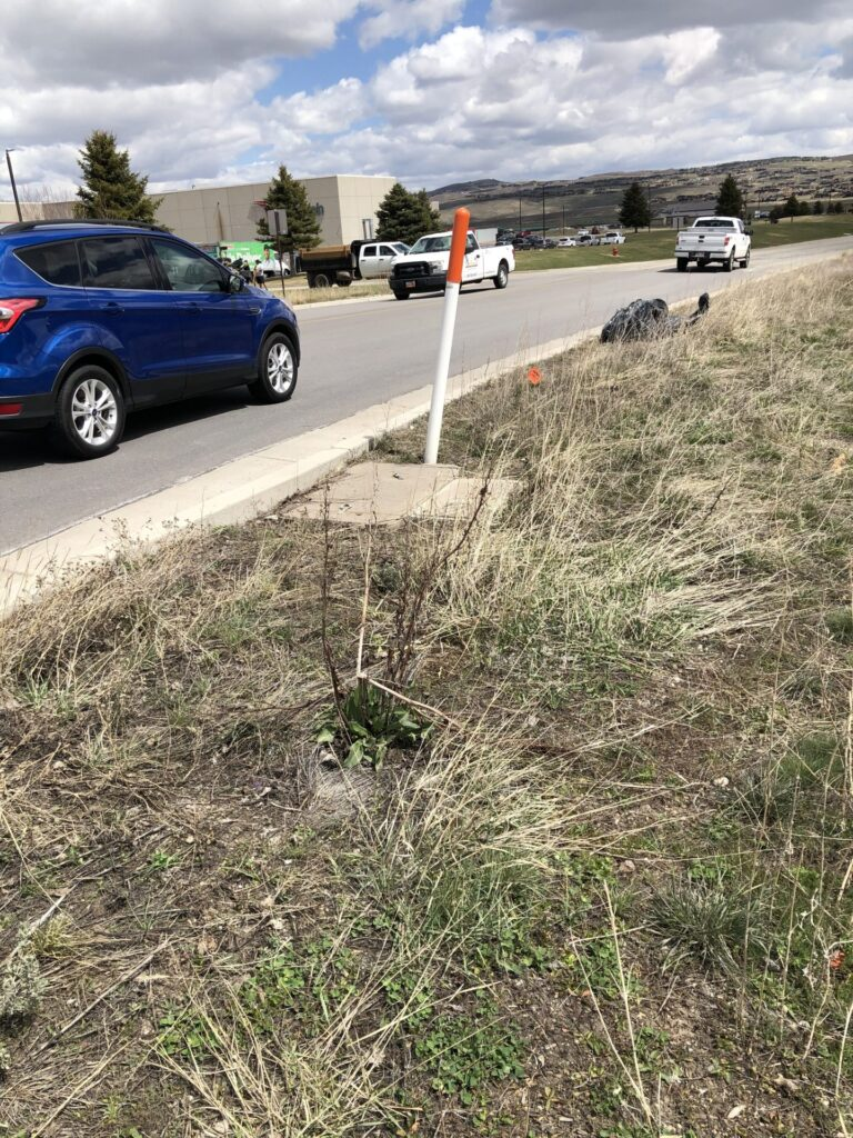 Photo of the grassy side of the road that I cleaned up on Earth Day.