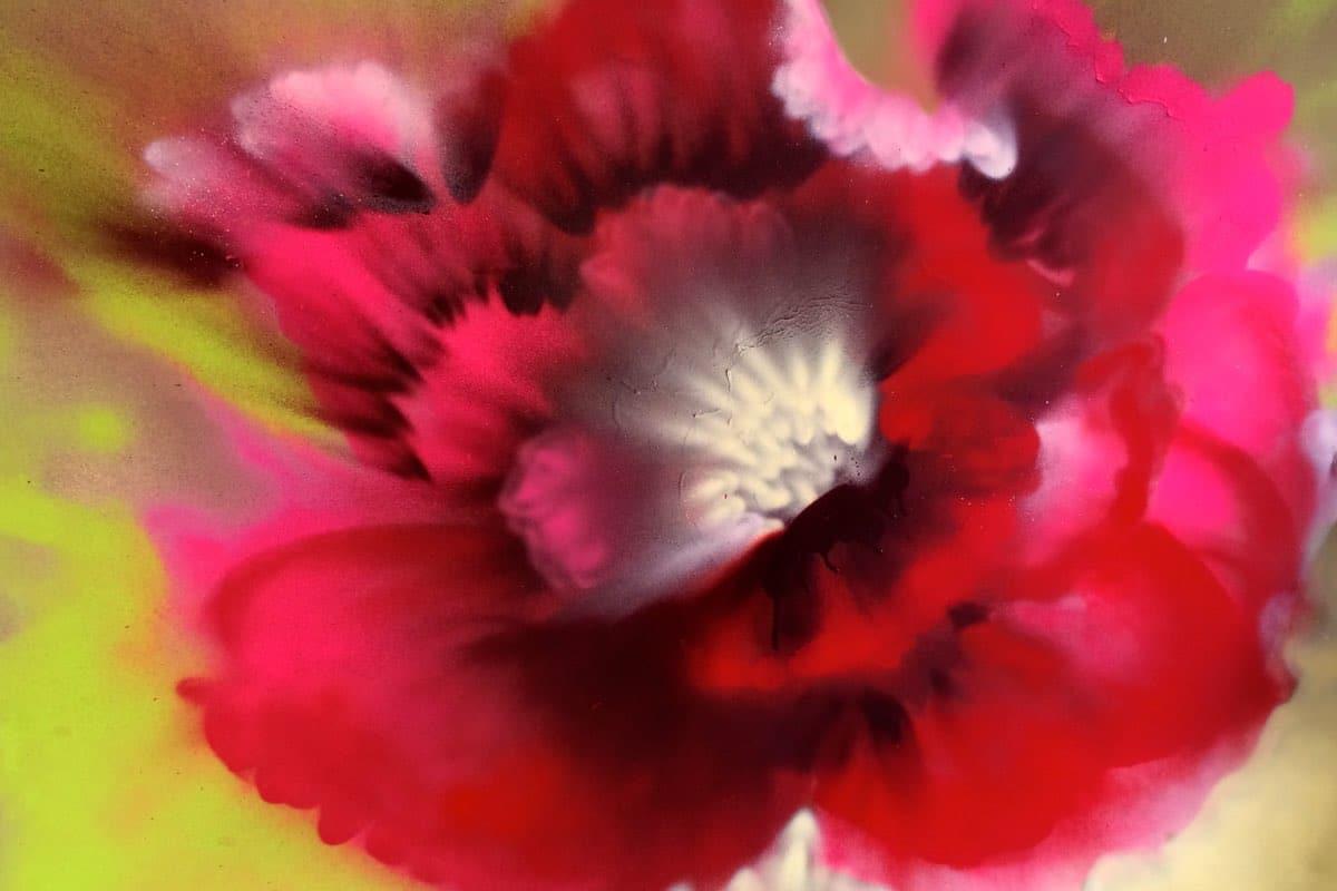 flower-artwork-cynthia-mcloughlin